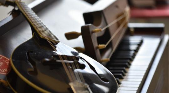 Mandoliini ja jouhikko lepäävät harmoonin koskettimiston päällä.