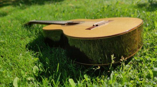 Kitara vihreällä nurmikolla